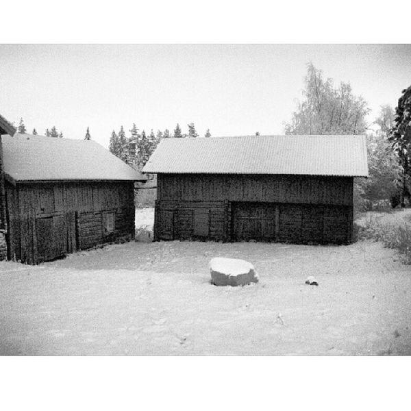 Dalarna Hjortnäs Instadalarna Dalsberget Vinter
