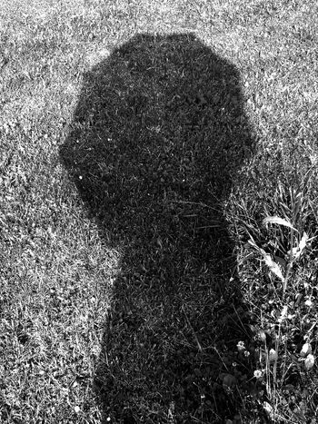 A tribute to Vivian Maier Shadow Selfportrait Light And Shadow Personal Perspective Outdoors Licht Und Schatten Black And White Blackandwhite Photography Black And White Photography Black & White Schattenspiel  Schatten Schattenbild Schwarzweiß Schwarz & Weiß