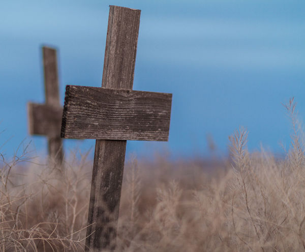 Here lies... Cross Cross Shape Day Low Angle View Nature No People Outdoors Religion Sky Symbol Wood - Material