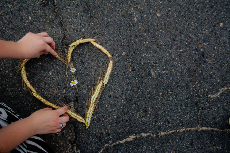 Woman Arranging Heart Shape Made Out Of Wheat