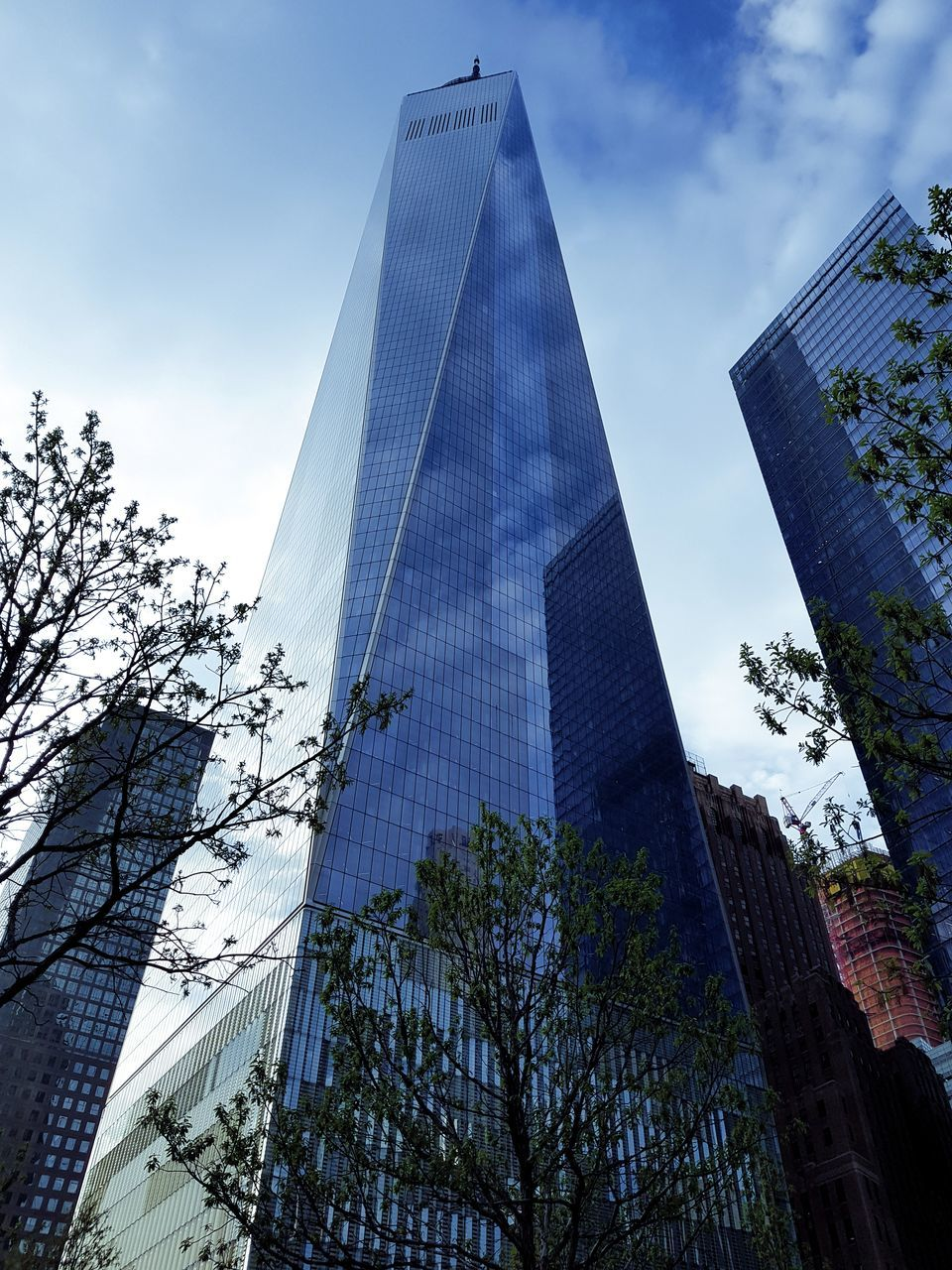 architecture, low angle view, skyscraper, modern, built structure, building exterior, tall - high, sky, tree, growth, day, no people, outdoors, city, tall, travel destinations