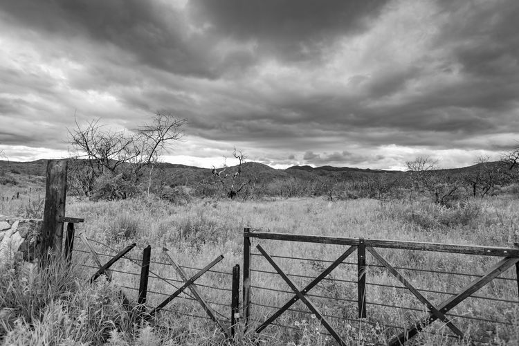 Black & White Afterfire Black And White Blackandwhite Blackandwhite Photography Day Field Land Landscape Nature No People Outdoors Storm Cloud