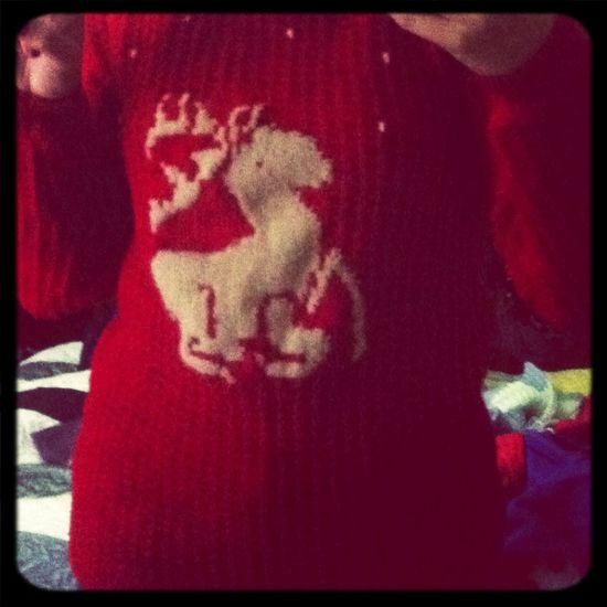 Jersey renil que me ha hecho mi abuela por Navidad ^^ Iloveit