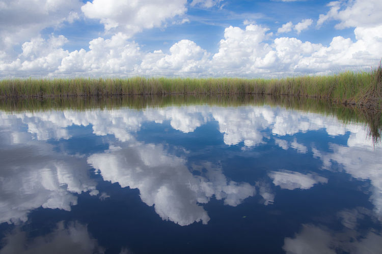 Florida Everglades  River Clouds Clouds And Sky Reflection Blue Blue Sky Grass Greenery Cloud - Sky Sky Water Tranquility Beauty In Nature Tranquil Scene Scenics - Nature Day Nature Plant No People Idyllic Outdoors Reflection Lake Non-urban Scene