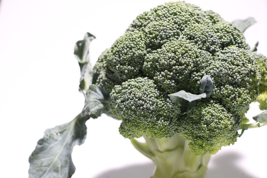 Close-up Green Vegetables Brocolli Studio Shot White Background