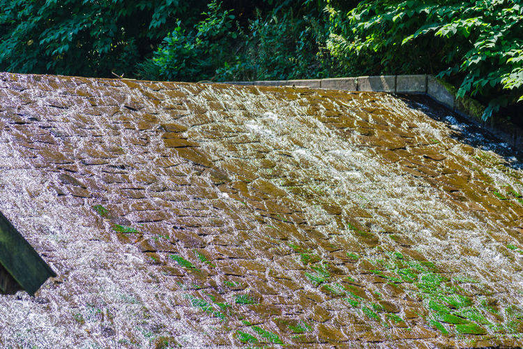 Water cascading beyond the edge of a small dam Architecture Beauty In Nature Building Exterior Built Structure Concrete Day Flowing Water Growth High Angle View Nature No People Outdoors Pattern Plant Retaining Wall Staircase Stone Wall Sunlight Tree Wall Wall - Building Feature Water
