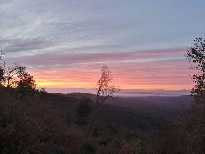 Morning Morning Light Morning Sky Sky Nature No People Rural Tuscany Italy Sun Alba Aurora Scenery Wonderful