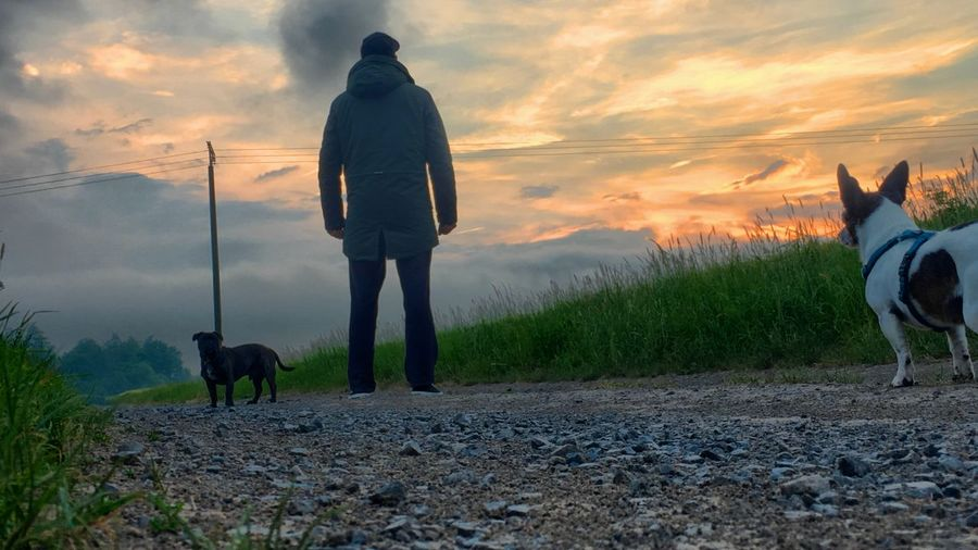 Rear View Of Man With Dogs Standing On Dirt Road Against Sky During Sunset