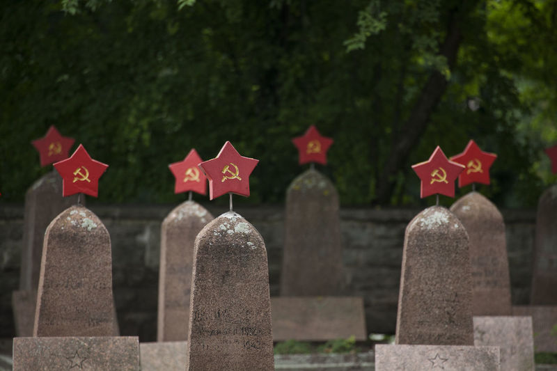 cementary for fallen sovjet soldiers in second world war Russia Soldier Cementery Cemetery Day Emotion Flag Focus On Foreground Grave Hammer & Sickle In A Row Memorial Nature No People Outdoors Patriotism Plant Red Sadness Second World War Soviet Stone Tombstone Tree Udssr Word War II