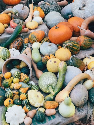 Pumpkins Farm Autumn Harvest Fall Colors Fall Organic Full Frame Backgrounds Abundance Large Group Of Objects No People High Angle View Day Food And Drink Choice Food Variation Still Life Healthy Eating Outdoors Multi Colored Freshness Nature Market Textured  For Sale