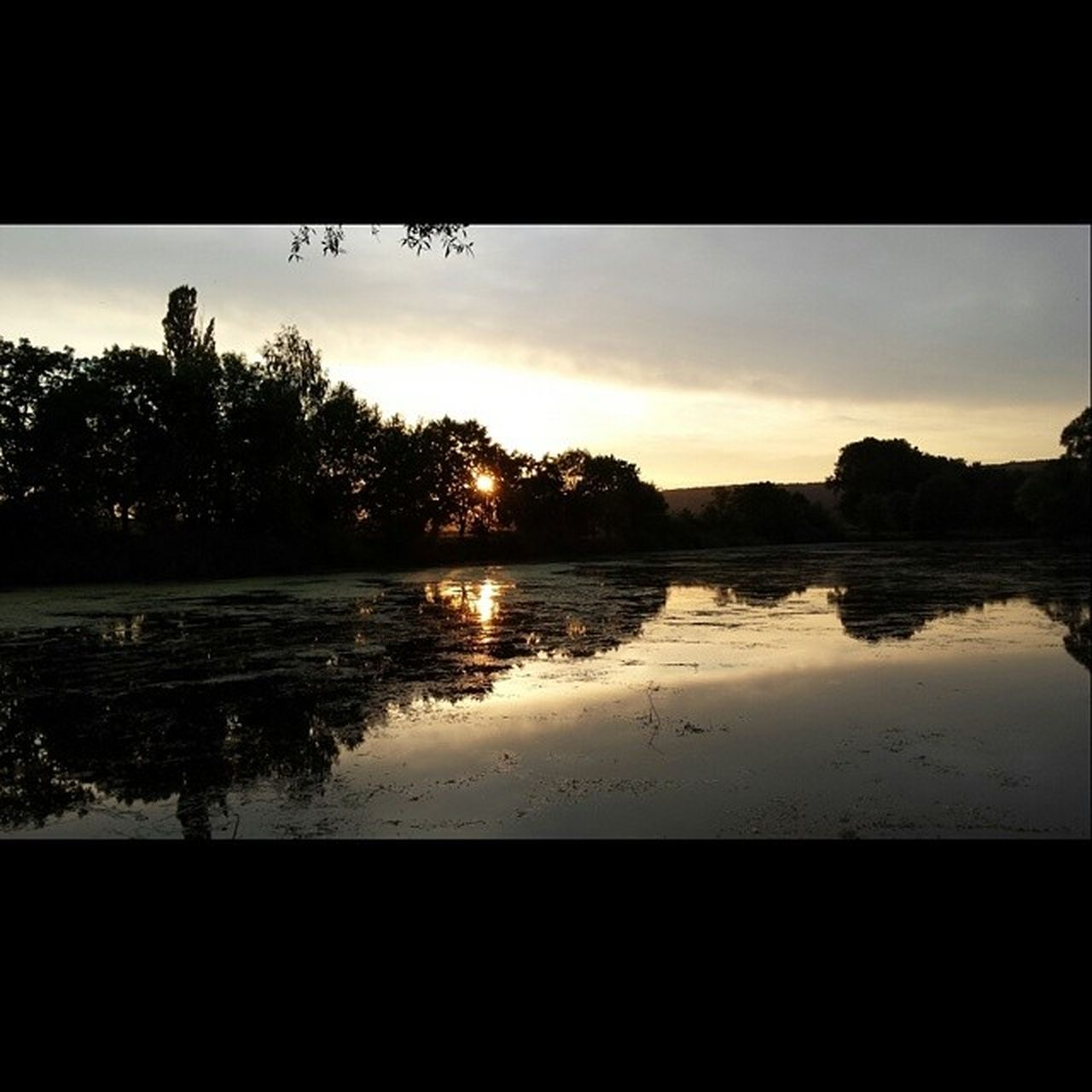 silhouette, sunset, reflection, water, tree, tranquil scene, sky, nature, lake, scenics, beauty in nature, tranquility, outdoors, no people, day