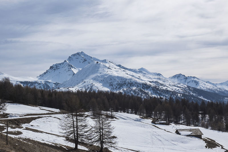 Weather Italy Alps Winter Snow Cold Temperature Beauty In Nature Cloud - Sky Sky Mountain Scenics - Nature Tranquil Scene Tree Plant Tranquility Mountain Range Environment White Color Nature Non-urban Scene Snowcapped Mountain Covering No People Mountain Peak Cloudy