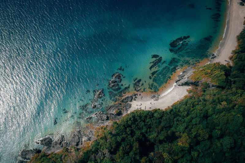 Water Sea Scenics - Nature Beauty In Nature High Angle View Nature Land Tranquil Scene Tranquility Beach Aerial View Day No People Tree Plant Underwater Idyllic Outdoors Turquoise Colored