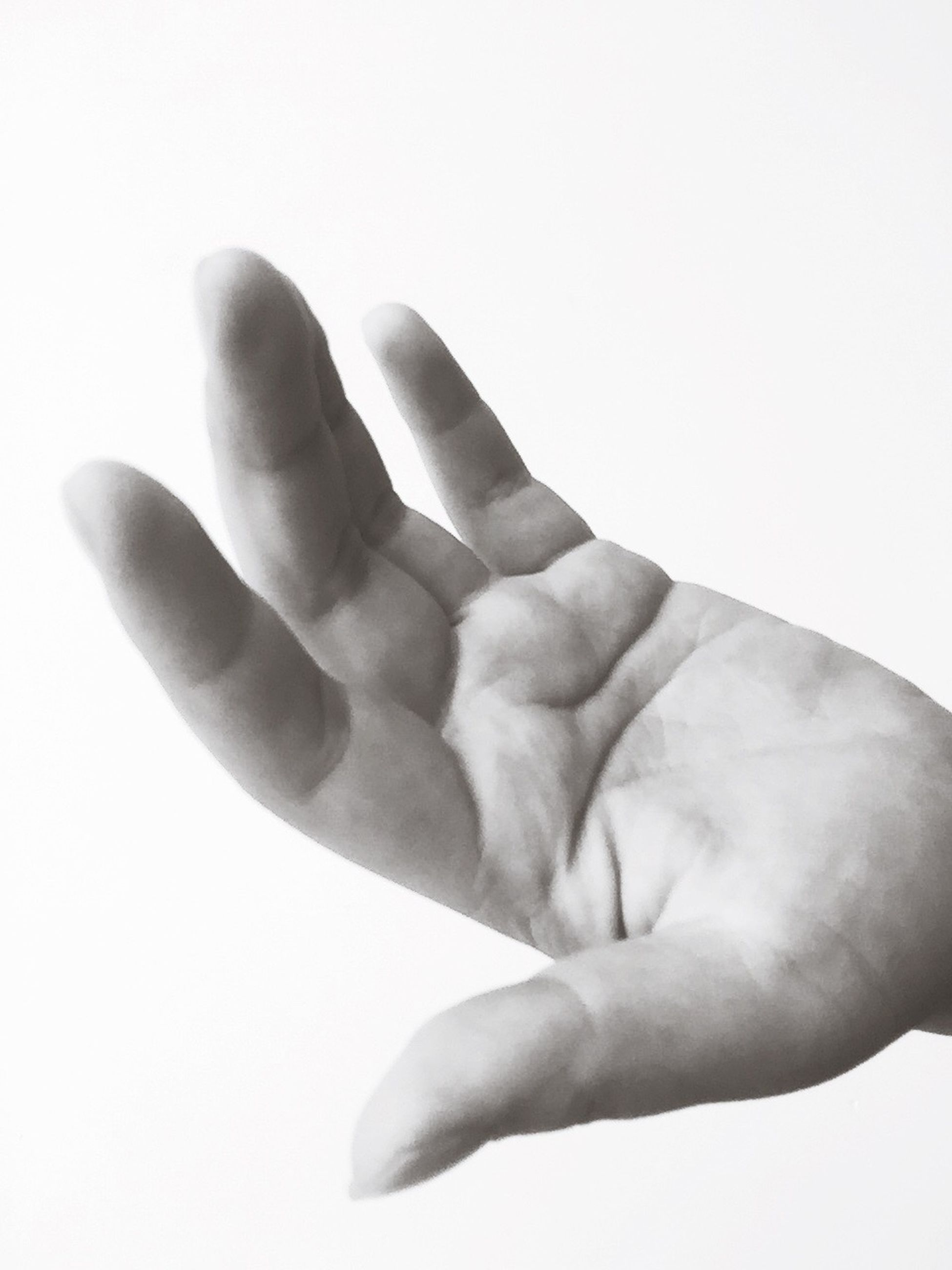 person, studio shot, white background, human finger, part of, cropped, indoors, close-up, holding, copy space, lifestyles, unrecognizable person, showing, human skin, personal perspective, palm