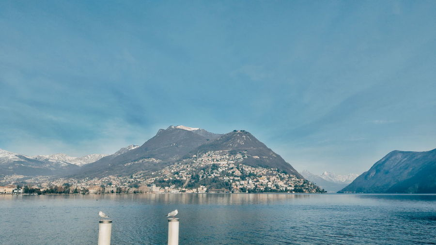Seagull Seagulls Monte Bre Lugano Water City Mountain Snow Lake Cityscape Sunset Beach Cold Temperature Blue Mountain Range