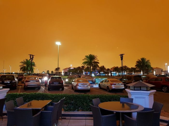 A sand storm in Kuwait at 3pm Tree Palm Tree City