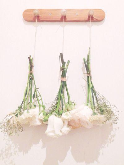 Flowers Upside