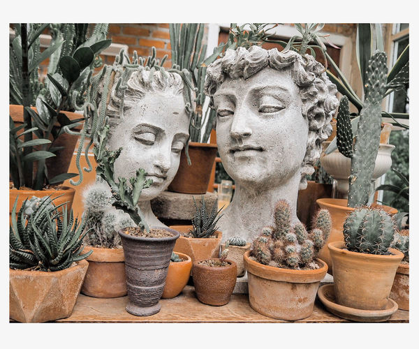 Buddha statue on potted plant