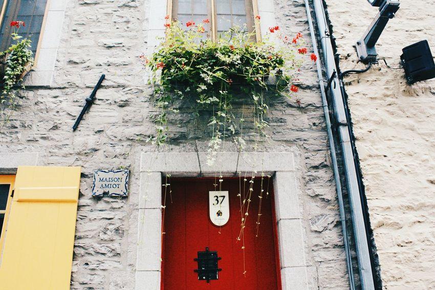 Summer Exploring Quebec Streetphotography Doors Taking Photos City EyeEm Gallery Textures And Surfaces EyeEm