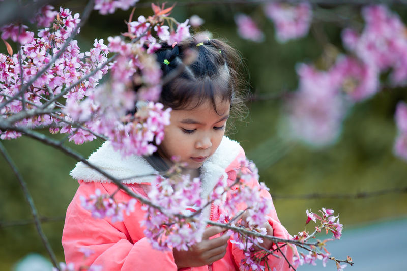 Cute Girl Looking At Pink Flowering Plants