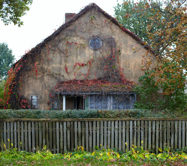 Ancient Architecture Boarded Broken Cement Dramatic Fence Frighten Halloween Haunted House Liana No People Old Old House Scary Stone Stories Window