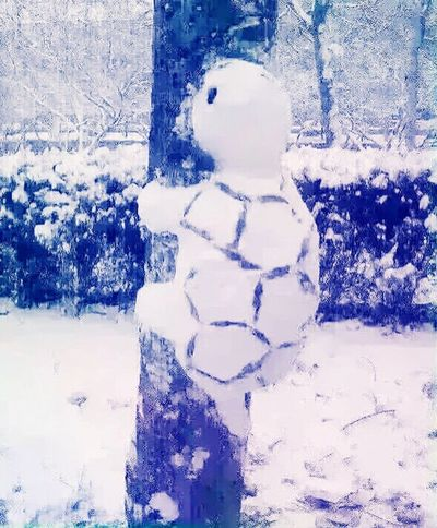 Chongqing is never snowing but now it's Snowing Snowman Lol :) Funny Genious People did this! Taking Photos Enjoying Life Taking Pictures