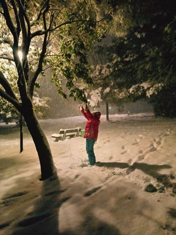❄👧 Cute Green Color White Frio ⛄❄ Ice Iceland Illuminated Palo Neve No People Non-urban Scene Nature Nature Photography -1℃ Collection Colle Park Ulivi Sister Girl Snow ❄ Night Nightphotography EyeEm