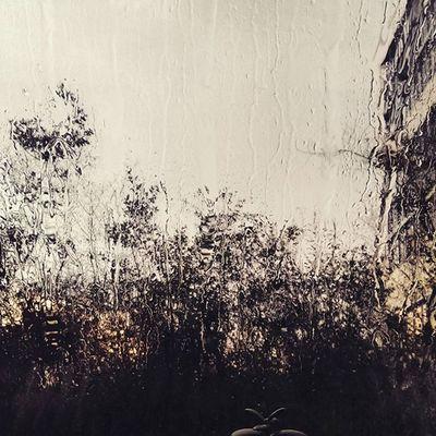 """Somewhere in my heart I'm always dancing with you in summer rain"" _Belinda Carlisle"