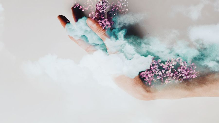 Cloud Lilac Nature Human Hand Cyberspace Technology Multi Colored Internet White Background Studio Shot Communication Wireless Technology Cloud Computing Surreal Mysterious Digital Composite Multiple Exposure Double Exposure Collage Surrealism Springtime Decadence My Best Photo