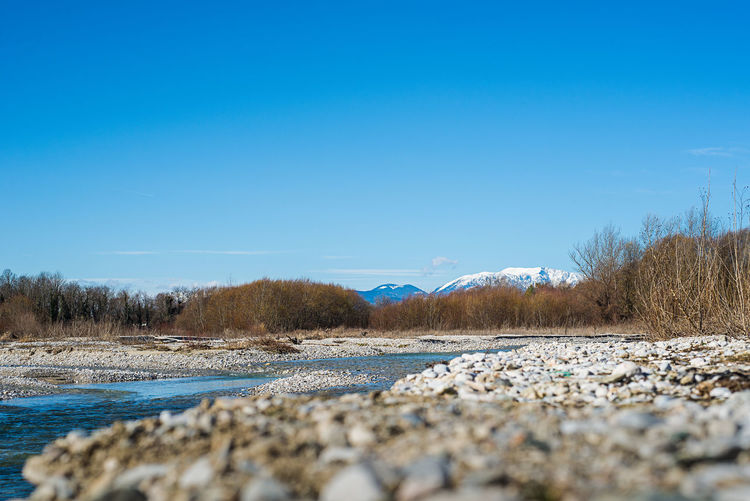 beach of a river with view to the snow covered mountains Beach Beauty In Nature Blue Clear Sky Cold Temperature Covered Day Lake Landscape Leitha Mountain Nature No People Outdoors Scenics Schneeberg, Austria Sky Snow Surface Level Tranquil Scene Tree Water