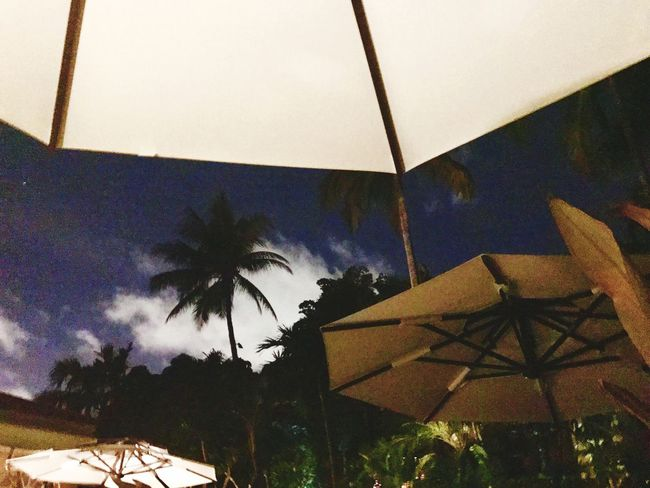 Last nights of summer Sky Nightlife Brazilian Court Summer Night Palm Trees Umbrellas