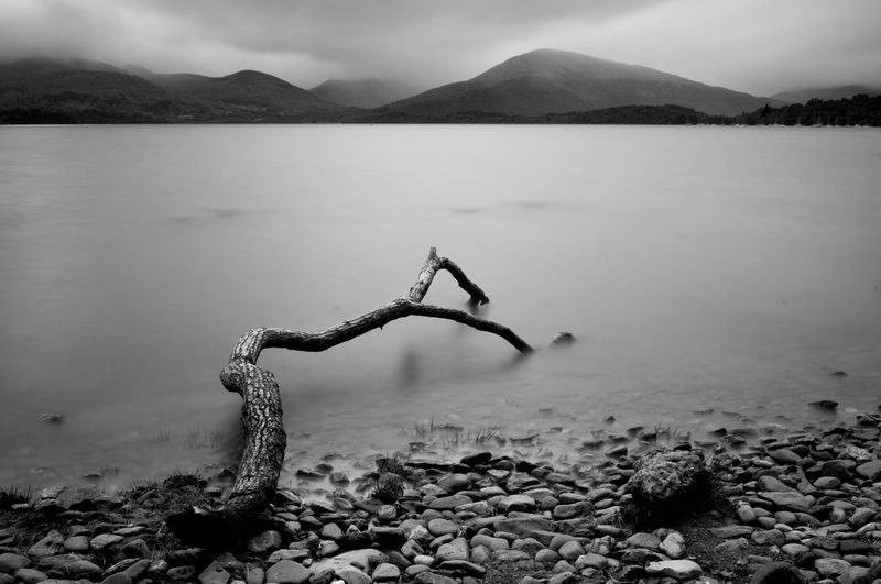 Tree log on the loch lomond lake in trossachs national park, scotland. long exposure photography