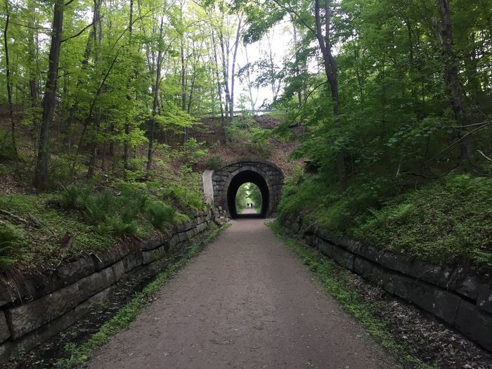 Railroad Tunnel Tunnel Underpass Rail Trail Path Trail Greenery Trees No People Quiet Peaceful Pathway Holliston, MA