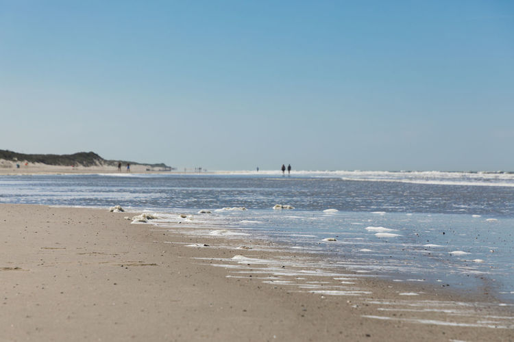 Distant walking. Beach Beauty In Nature Blue Clear Sky Copy Space Day Horizon Incidental People Land Nature Ocean Outdoors Sand Scenics - Nature Sea Sky Summer Tranquil Scene Tranquility Walking Water Wave