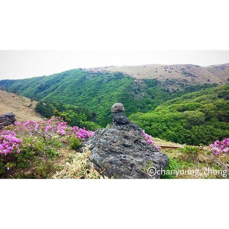 대한민국 제주도 제주 한라산  윗세오름 오름 돌 산 여행 사진 Korea Jejuisland Jeju Mountain Hanra Orum Stone Travel Travelgram Photo