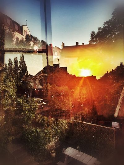 Sunset mosaic Fragments Mosaic Urban Urban Skyline Trees Window View Historic Building Sunset Reflection Sky Sunset Building Exterior Architecture Built Structure Lens Flare