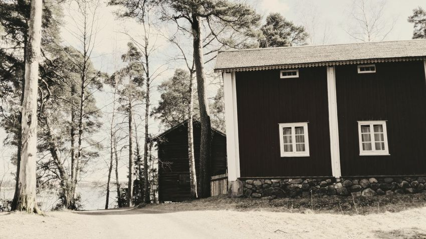 Built Structure Architecture Building Exterior Day No People Outdoors Tree Finland Helsinki Huawei Suomi Travel