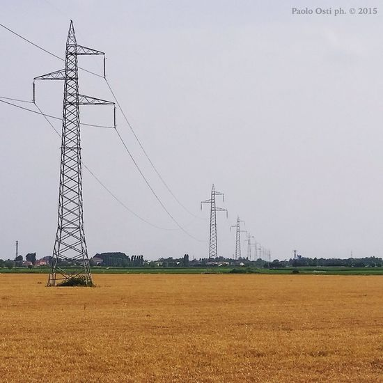 Campagna .... elettrica Campagna Campi Polesine Landscape Infinity Grano Electricity