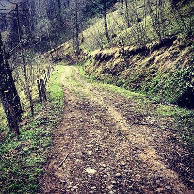 Village Road Trabzon Beşikdüzü  blacksea karadeniz bahar nature outdoor trekking plateau country instafun instamood instagood instagram instahub jj igers igersturkey jj_forum instafun