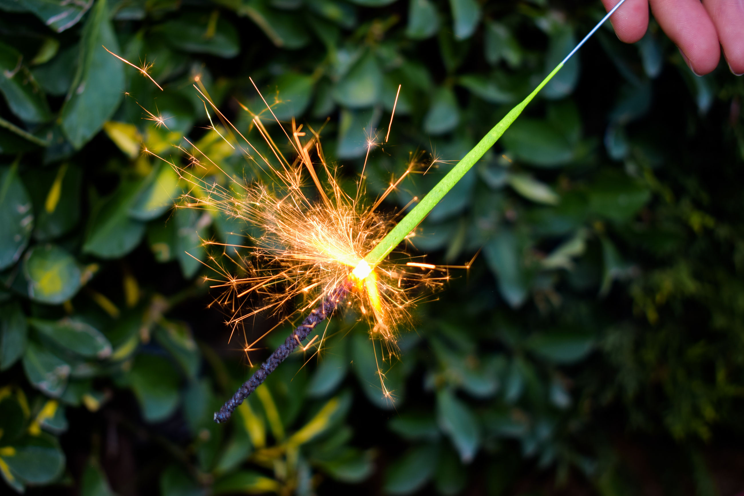 human hand, one person, real people, holding, sparkler, outdoors, focus on foreground, motion, firework - man made object, long exposure, human body part, close-up, day, people