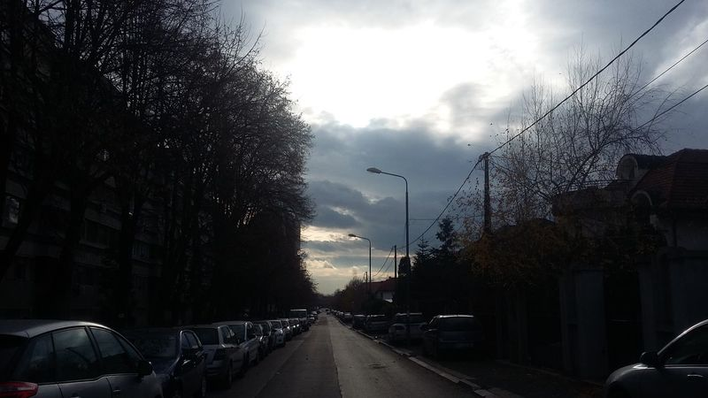 Tree Cloud - Sky Sky Outdoors The Way Forward Cold Temperature No People City Day