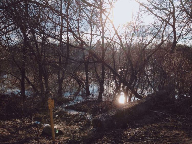 The spring freshet. Russia Freshet Flood Spring April Showcase April