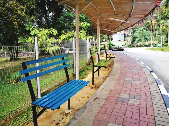 colors Corridor Shuttle Bus Bus Transportation Colorful Colorful Benches Taman Botani Garden Waiting Nobody Safari Animals Safari Tourism Tour Garden Sunroof Queue Holiday School Tree Chair Empty Architecture Park Bench Bench Seat Absence Sun Lounger Park - Man Made Space Park