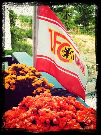 Eisern Union.....!
