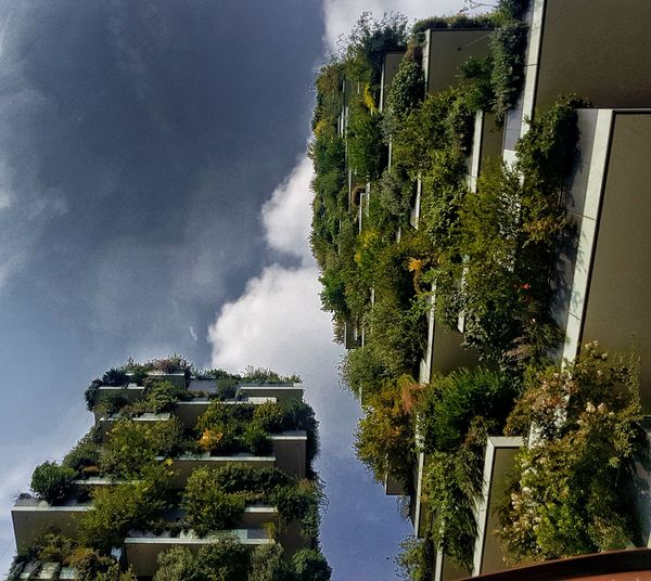 "This is the ""Bosco Verticale"" (Vertical forest), designed by Stefano Boeri, a famous architect, two skyscrapers, where in every balcony, there are some trees. Architecture Built Structure Perspective Architecture_collection Outdoors Nature Skyandclouds  Trees Relaxing Moments Taking Photos Getting Creative From My Point Of View Lights And Shadows Getting Inspired"