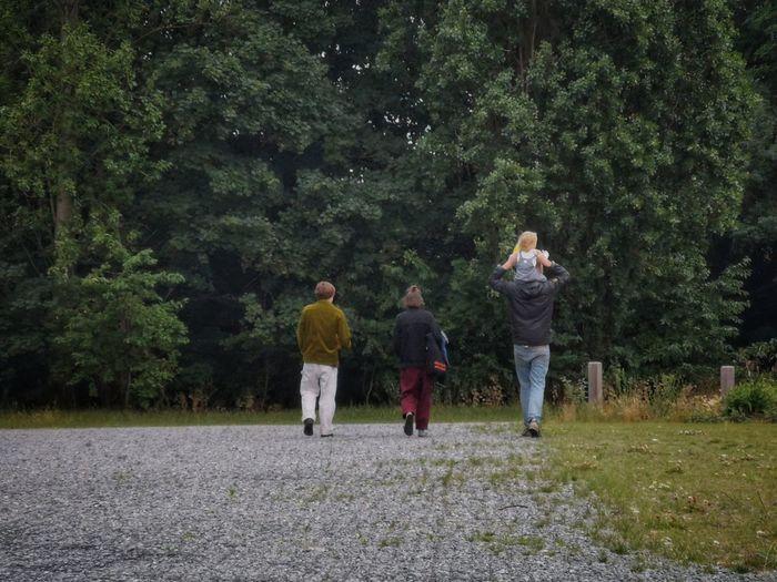 Rear view of men walking in forest