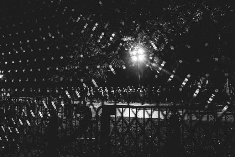 Illuminated street light by trees at night