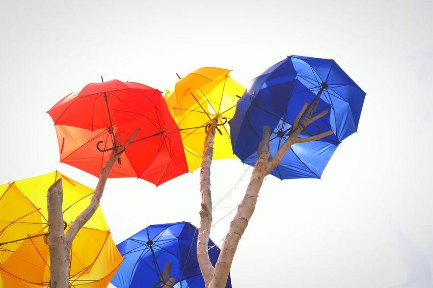 Umbrella EyeEm Gallery EyeEmMalaysia EyeEm Malaysia Holiday Malaysia Backpacktraveler Umbrellas Eyeemphotography