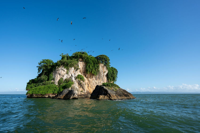 Los Haitises National Park - Dominican Republic. Dominican Republic Los Haitises Beauty In Nature Blue Day Flock Of Birds Horizon Horizon Over Water Land Nature Outdoors Rock Rock - Object Rock Formation Samana Scenics - Nature Sea Sky Solid Stack Rock Tranquil Scene Tranquility Turquoise Colored Water Waterfront