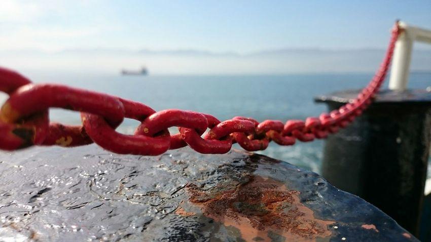 Spring Izmit Gulf Marmara Marmarasea Nature Ship